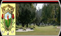 Brookside Golf Club (Stingers) logo