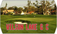 Wilson Lake GC (Stingers Golf Club) logo