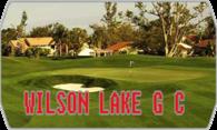 Wilson Lake GC (Stingers Golf Club) logo