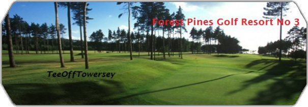 Forest Pines Golf Resort No 3 logo