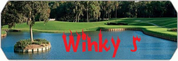 Winky`s logo