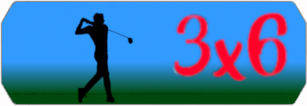 6x3 logo