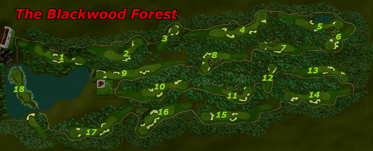Picture of The Blackwood Forest - click to view original size