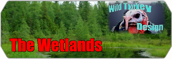 The Wetlands logo