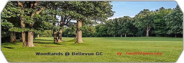 Woodlands @ Bellevue GC logo