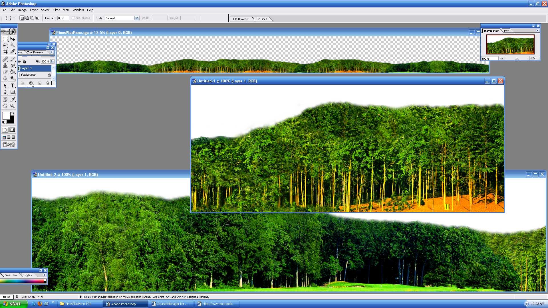 Picture of PinesPlusPano - click to view original size